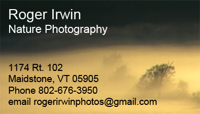 Roger Irwin business card